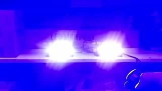 Стробоскоп Federal 4 LED Синий